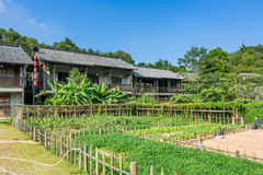 Traditional Chinese old buildings and vegetable gardens at Hakka Village Stock Photography