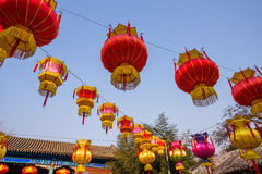 Traditional Chinese Red Lantern Hanging On Tree, celebrating New Year Stock Photography