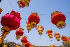 Traditional Chinese Red Lantern Hanging On Tree, celebrating New Year Stock Image