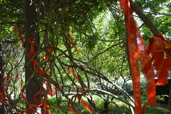 Traditional Chinese Ribbons stock photo
