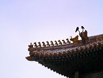 Traditional Chinese Roof Figures, Forbidden City, Beijing royalty free stock photos