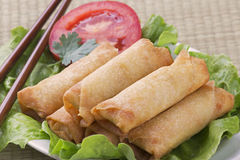 Traditional Chinese Spring Rolls on a bed of lettuce Stock Images