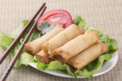 Traditional Chinese Spring Rolls on a bed of lettuce Royalty Free Stock Images