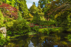 Traditional Chinese style garden with pond Stock Photography