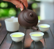 Tea ceremony. Traditional chinese tea ceremony, close up photo Stock Image