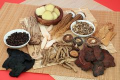 Free Traditional Chinese Tonic Herbs For Herbal Medicine Stock Images - 163193914