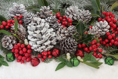 Traditional Christmas Flora royalty free stock photography