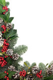 Traditional Christmas Floral Border Stock Images