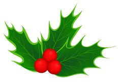 Traditional Christmas holly leaves Royalty Free Stock Photos