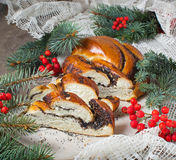 Traditional  Christmas poppy seed cake Royalty Free Stock Photo