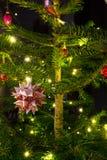 Traditional christmas tree Stock Photos