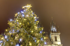 Traditional Christmas tree at Old towns square in Prague, Czech republic, with the church of Mother of God before Tyn behind it Royalty Free Stock Image