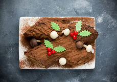 Traditional Christmas Yule Log cake decorated with chocolate hol Stock Images