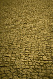 Traditional cobblestone floor street in warm tone Royalty Free Stock Photo