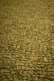 Traditional cobblestone floor street in warm tone Royalty Free Stock Photo