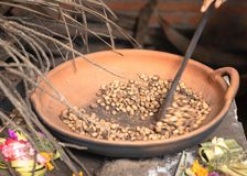 Traditional coffee beans roasting in a pan, hand held spoon moves the beans. Bali tradition. royalty free stock photos