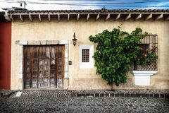 Traditional collonial house with tree, Antigua, Guatemala. Traditional collonial house with wooden old door with tree, Antigua, Guatemala royalty free stock photos