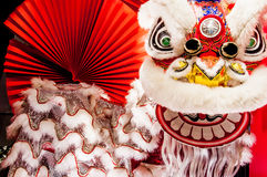 Chinese lion dance for Chinese new year with red fan background royalty free stock image