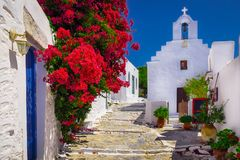Traditional colorful mediterranean street with flowers and church, Cyclades, Greece. Traditional colorful mediterranean street with flowers and church, Amorgos royalty free stock photography