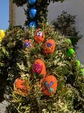 Traditional with coloured eggs decorated spring on eastern. The eggs are handpainted and fixed on girlandes of twigs royalty free stock image