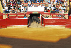 Traditional corrida bullfighting in spain Stock Photography
