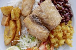 Traditional Costa Rican Dish Of Rice, Beans, Fish and Plantain Royalty Free Stock Photo