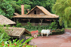 Traditional Costa Rican Home. With ox and cart stock photos