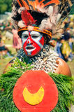 Traditional costume in Papua New Guinea royalty free stock images