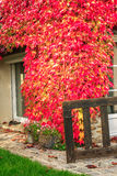 Traditional cottage in early Autumn Royalty Free Stock Image