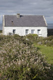 Traditional Cottage, Inishmore; Aran Islands Royalty Free Stock Photo