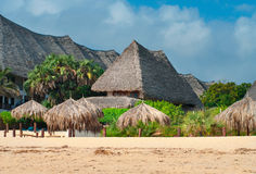 Traditional cottage between palm trees. On the beach Stock Photography
