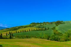 Traditional country road in Tuscany Royalty Free Stock Image