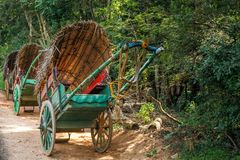 Traditional cowhide carts  Sri Lanka covered with coconut leaves. Stand on the road on a sunny day Stock Photos