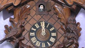 Traditional Cuckoo Clock stock footage