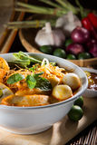 Traditional curry spicy noodle soup Royalty Free Stock Photos