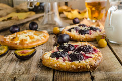 Traditional Czech cake with plums and prunes Stock Photo