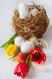 Traditional Czech easter decoration Royalty Free Stock Photo