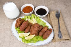 Turkish foods; cig kofte. Traditional delicious Turkish foods; bulgur salad, cig kofte stock image