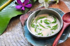 Traditional Dessert Cendol in Bowl with Wooden Spoon. Traditional dessert Cendol serve in bowl with wooden spoon royalty free stock photo