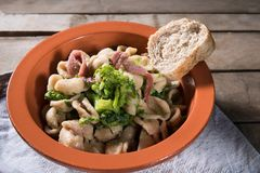 Traditional dish of Apulia region pasta Orecchiette with turnip greens and salted anchovies, close-up, rustic style stock images