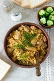 A traditional dish of some European countries is bigos made from cabbage, other vegetables and meat. Selective focus royalty free stock photography