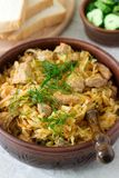 A traditional dish of some European countries is bigos made from cabbage, other vegetables and meat. Selective focus stock photo