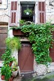 Traditional door with green plants Royalty Free Stock Photo