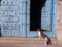 Traditional door in Tunis, Tunisia. Stock Images