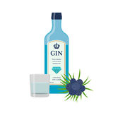 Traditional dry gin in blue bottle, juniper berries. Dry gin. Alcohol drink in flat vector style royalty free illustration