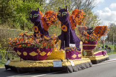 Traditional dutch flowers parade royalty free stock images