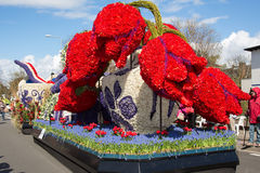 Traditional dutch flowers parade Royalty Free Stock Image