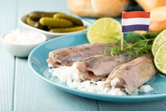 Traditional dutch food herring fish. Traditional dutch food freshly salted herring fish with onion called hollandse nieuwe. European food concept with copy space stock photography