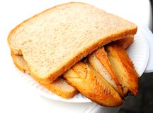 Traditional dutch fried fish sandwich Royalty Free Stock Photo