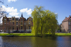 Traditional Dutch houses, Alkmaar town, Holland, the Netherlands Stock Photography